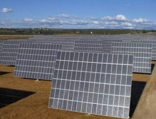 Univergy (socio de Macquarie) vende dos proyectos solares de 75 MW a Everwood – El Confidencial